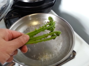 ostrich fern shoots to boil